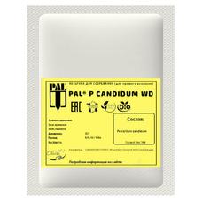 Плесень для сыра Standa P. Candidum WD 2U (на 200 литров молока)